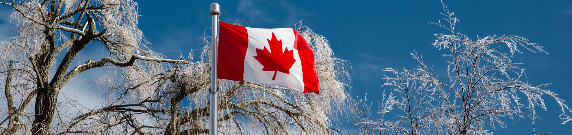 Adresses utiles pour un voyage au Canada