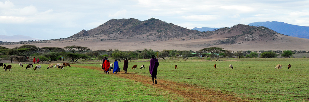 Visite d'un village Masai à Olduvai