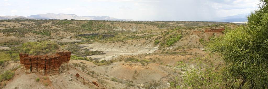 Gorges d'Olduvai