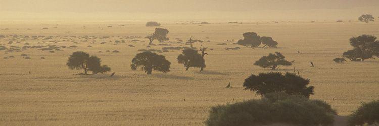 Un safari en 4x4 au Swaziland