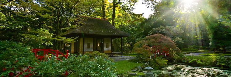 Guided tour of the towns of Takamatsu, Itano, Iya, Kotohira and Matsuyama.