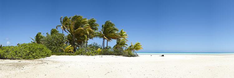 Les parcs nationnaux des Bahamas
