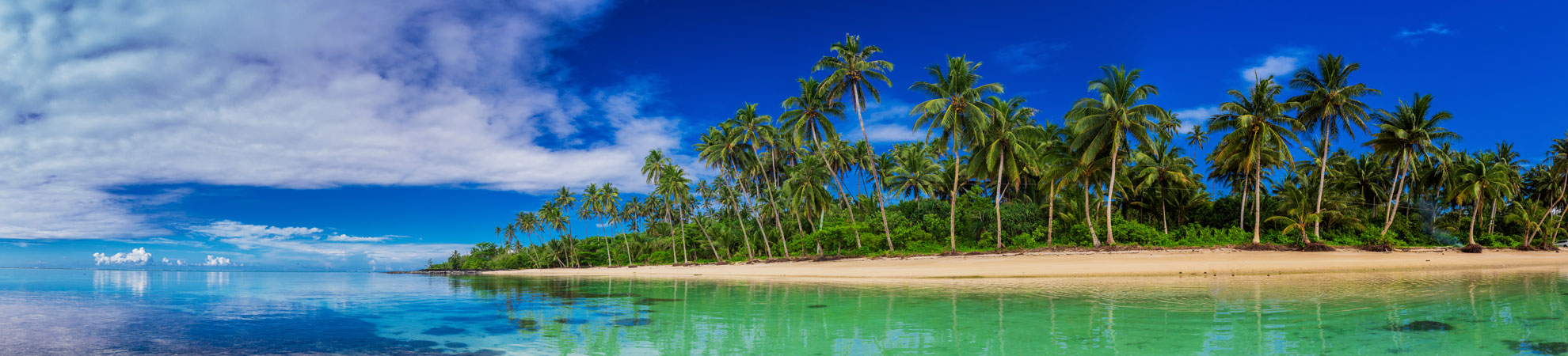 Quels sont les meilleurs moyens de communication en Polynésie