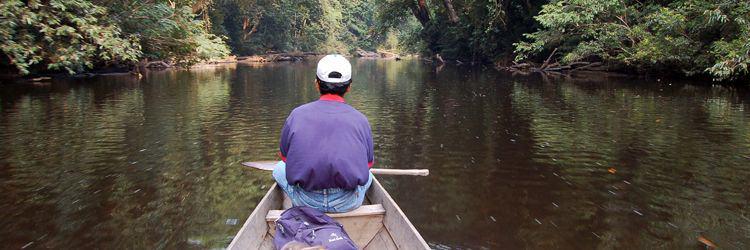 Rivière Kinabatangan