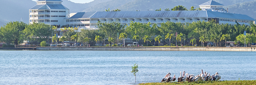 Bay Village Tropical Retreat - Cairns
