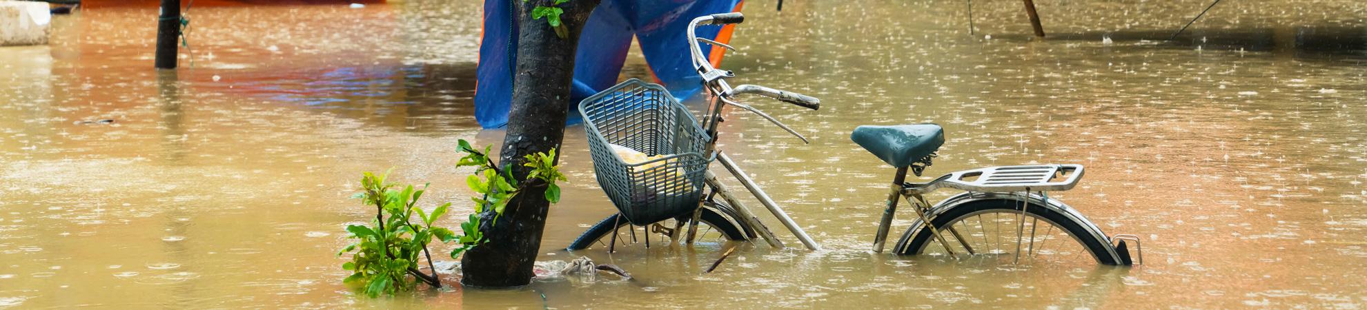 Les risques naturels au Vietnam