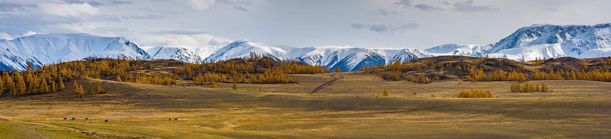 Paysages de Mongolie
