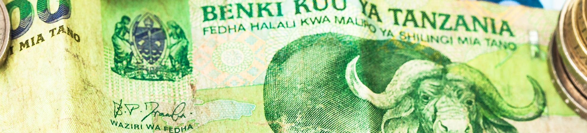 Monnaie en Tanzannie