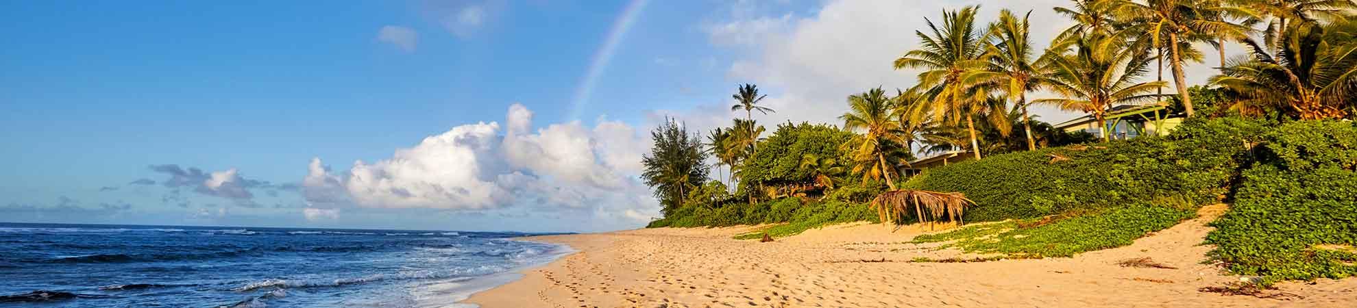 Séjour Hawaii : comment préparer un séjour de rêve sur l'île Hawai et visiter d'autres îles paradisiaque de l'archipel ?