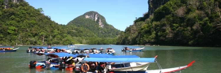 The best of both worlds: the Peninsula and Borneo