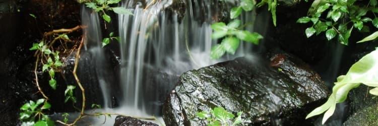 Tabin Mud Volcano and Waterfalls