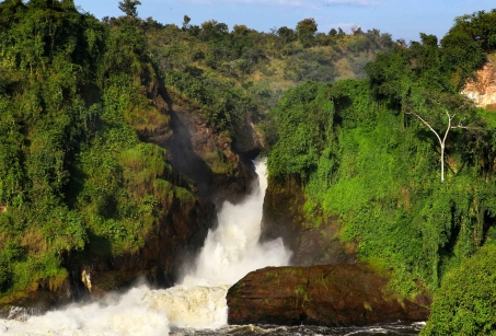 Des Chutes du Nil aux Gorilles