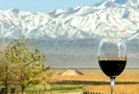 Sur la Route des vins argentins