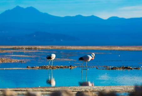 Beautés naturelles du Chili
