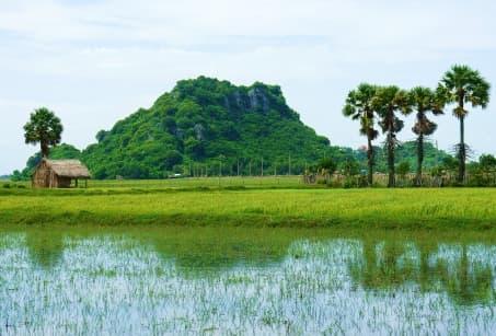 Vietnam : Delta du Mékong et ethnies des Hauts Plateaux