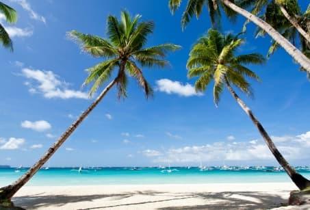 Plages de rêve à Paradise Island