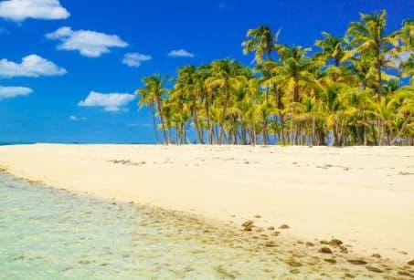 Sur mon île
