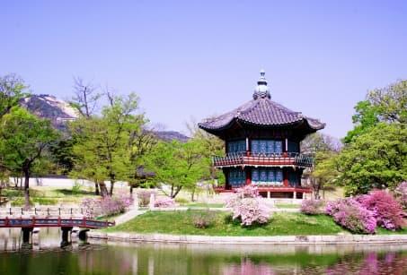 Tokyo et Séoul comme on les aime