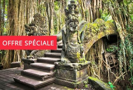 Terres de contrastes : Java Bali