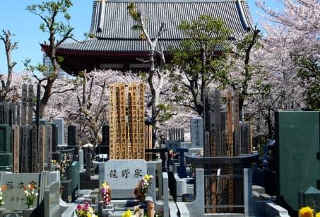 Follow the pilgrimage routes of Shikoku