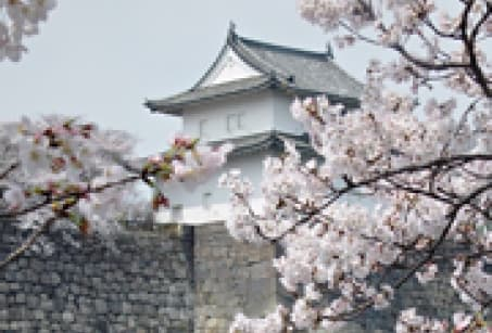 Discover the main sites of Japan at your own pace