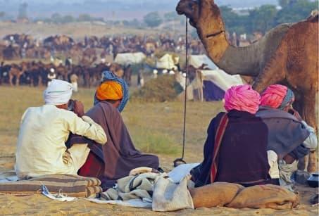 La magie de la foire de Pushkar