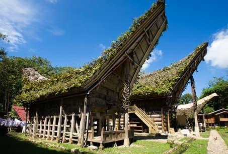 Extension - Les Célèbes : Au pays des Torajas