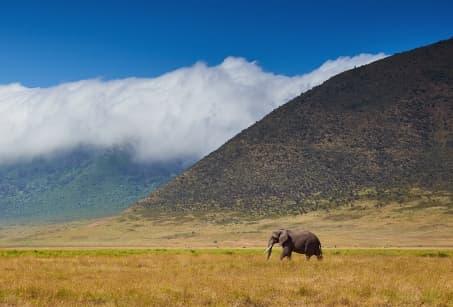 Voyage au bout de la Tanzanie