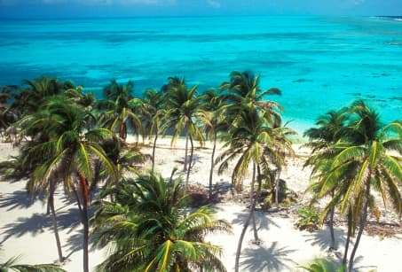 Merveilles de Belize !