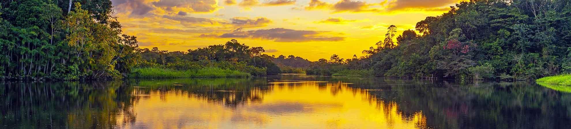 Voyage Manaus (Amazonie)
