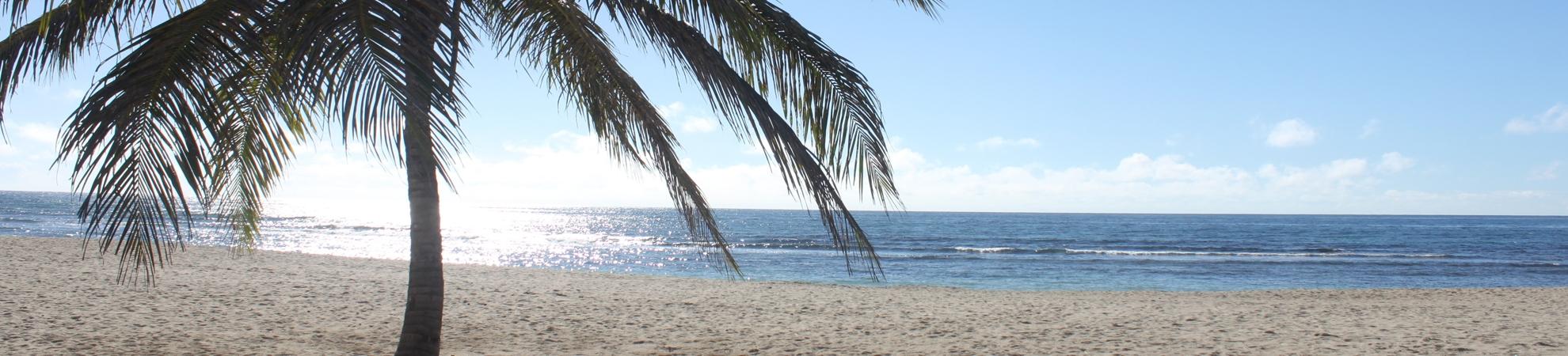 Voyage Boca Chica