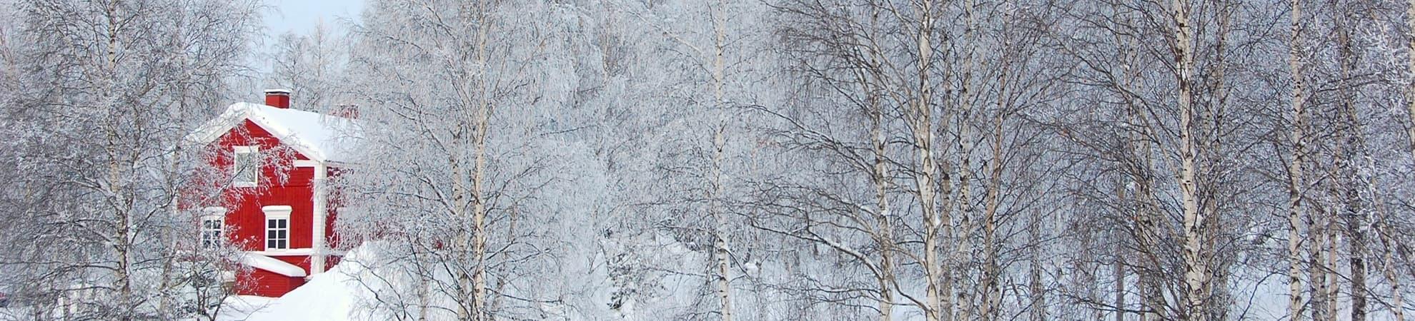Un hiver en Laponie