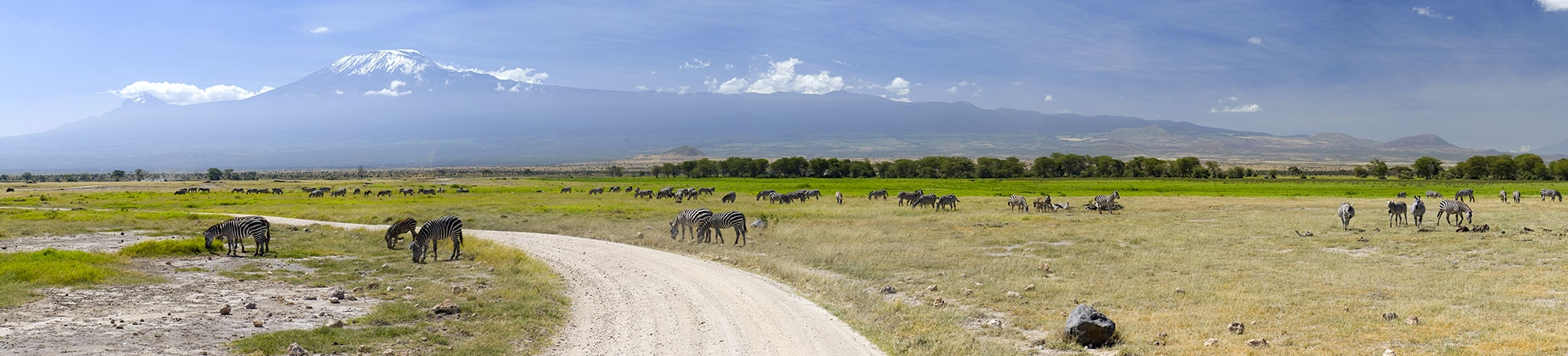 Voyage Mount Kilimanjaro National Park