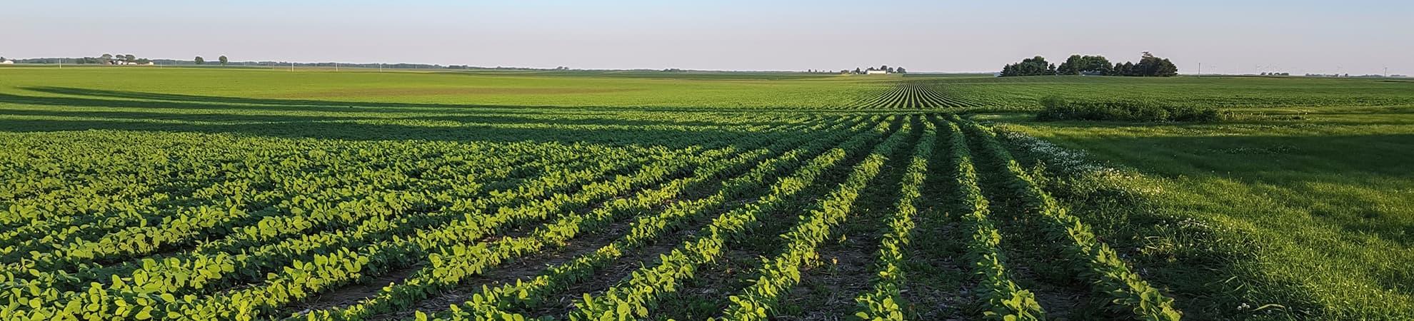 Industriel et agricole