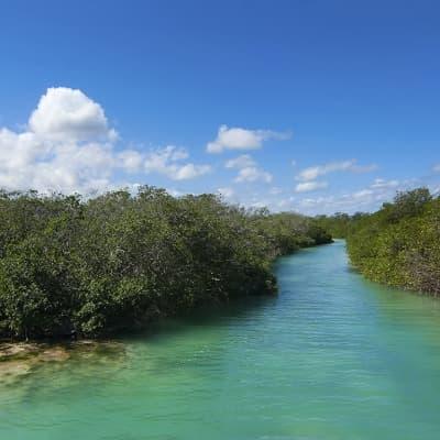 Escapade à l'exceptionnelle réserve naturelle de Sian Ka'an