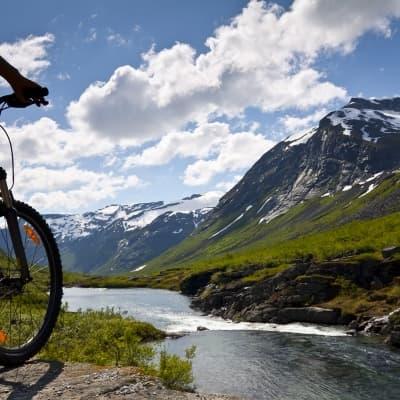 Location de vélos à Geiranger