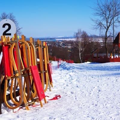 Luge sur le Parc de Kolomenskoe