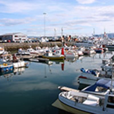 Partie de pêche à Reykjavik