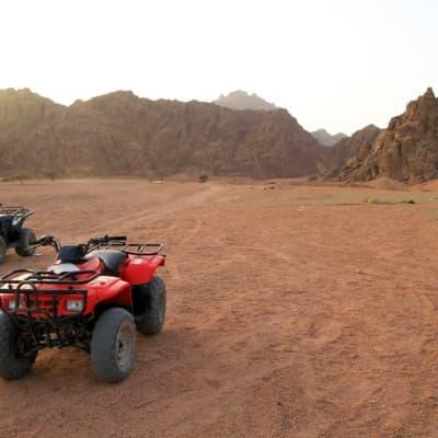 Les pistes de l'île en quad