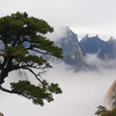 Randonnée sur les Monts Hua Shan