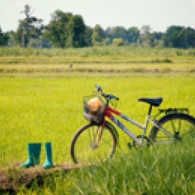 Vélo à Kontoku
