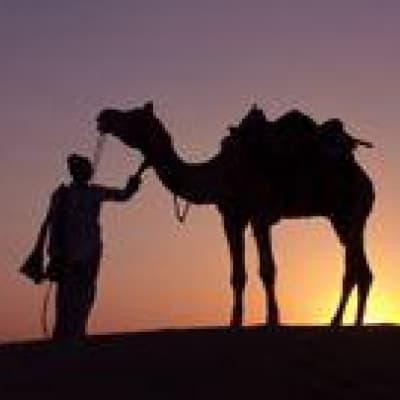 Découverte de Jaisalmer en 4X4 et à dos de chameau