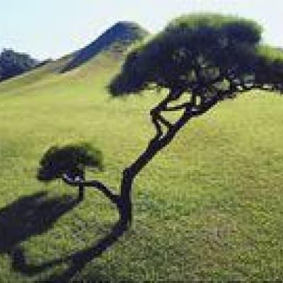 Visite des principaux sites naturels du Kyushu