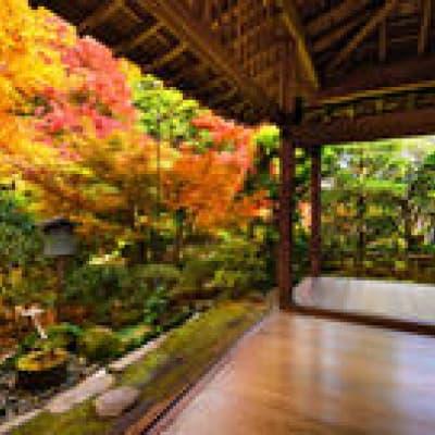 Nuit dans un temple Zen