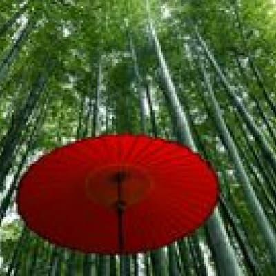 Visit of Sagano and Arashiyama