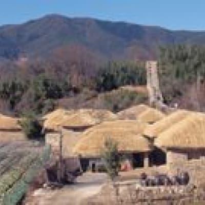 Visit the environmentally friendly farm of Chiiori