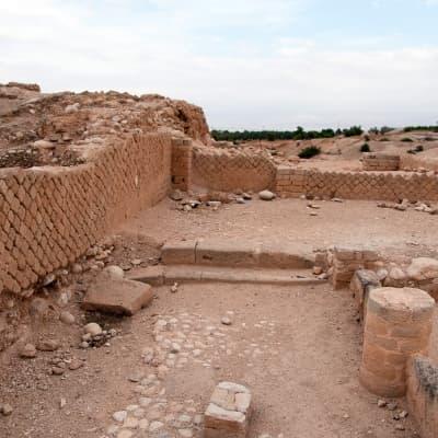 Vestiges du Palais Hisham