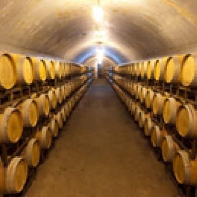 Visite d'une cave à vin (Pékin)