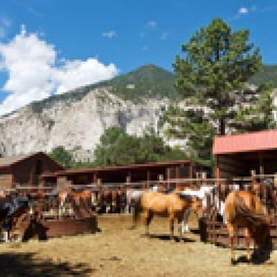 Séjour dans un ranch au Colorado