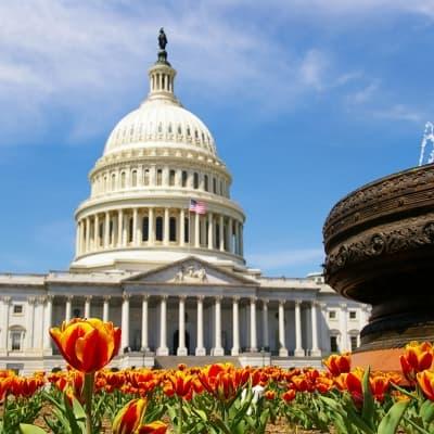 Visite audio-guidée de Washington